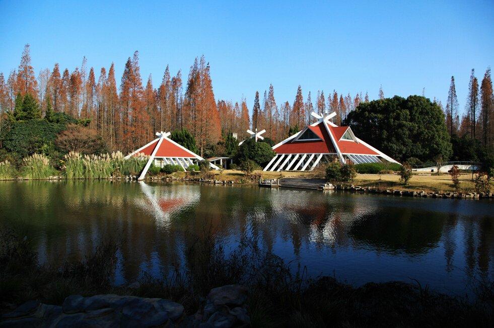 【上海亲近自然之旅】上海东平国家森林公园房车营地一晚 崇明东平