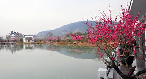 【杭州西湖三月特惠游,踏春赏花】超山风景区 杭州