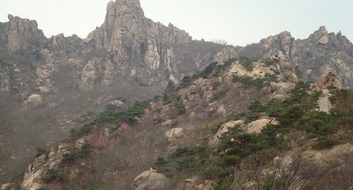 【踏青首选】自选(野生动物园/大珠山风景区/小珠山