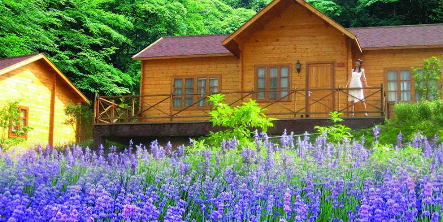 童话森林别墅图片
