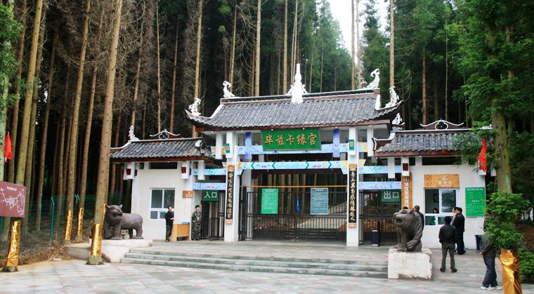 是黄水国家森林公园第一个示范旅游景点,属重庆市旅游局投资旅游景区
