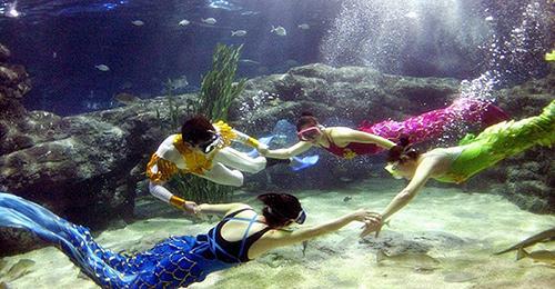 郑州海洋馆